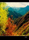 旺业甸国家森林公园